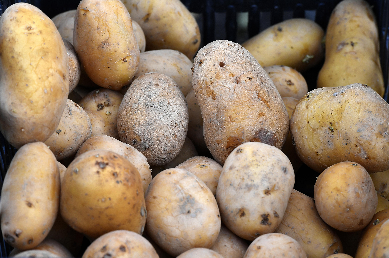 Burgonyából importra szorulunk, de tudományos szempontból Magyarország valódi krumplinagyhatalom