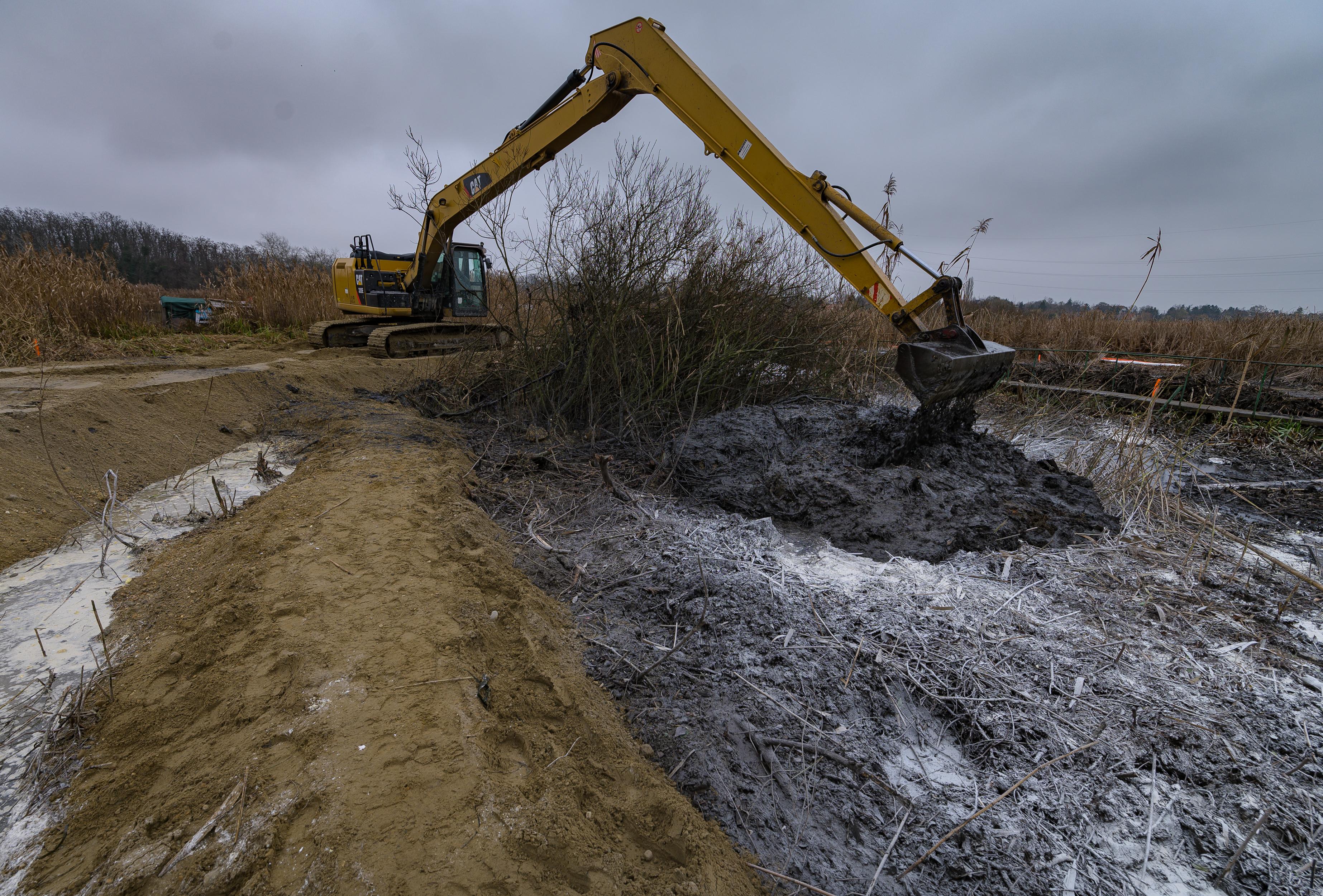 Hosszú évekig tart, amíg regenerálódik a természet a szigetszentmiklósi olajszennyezés után, addig ronda lesz a látvány