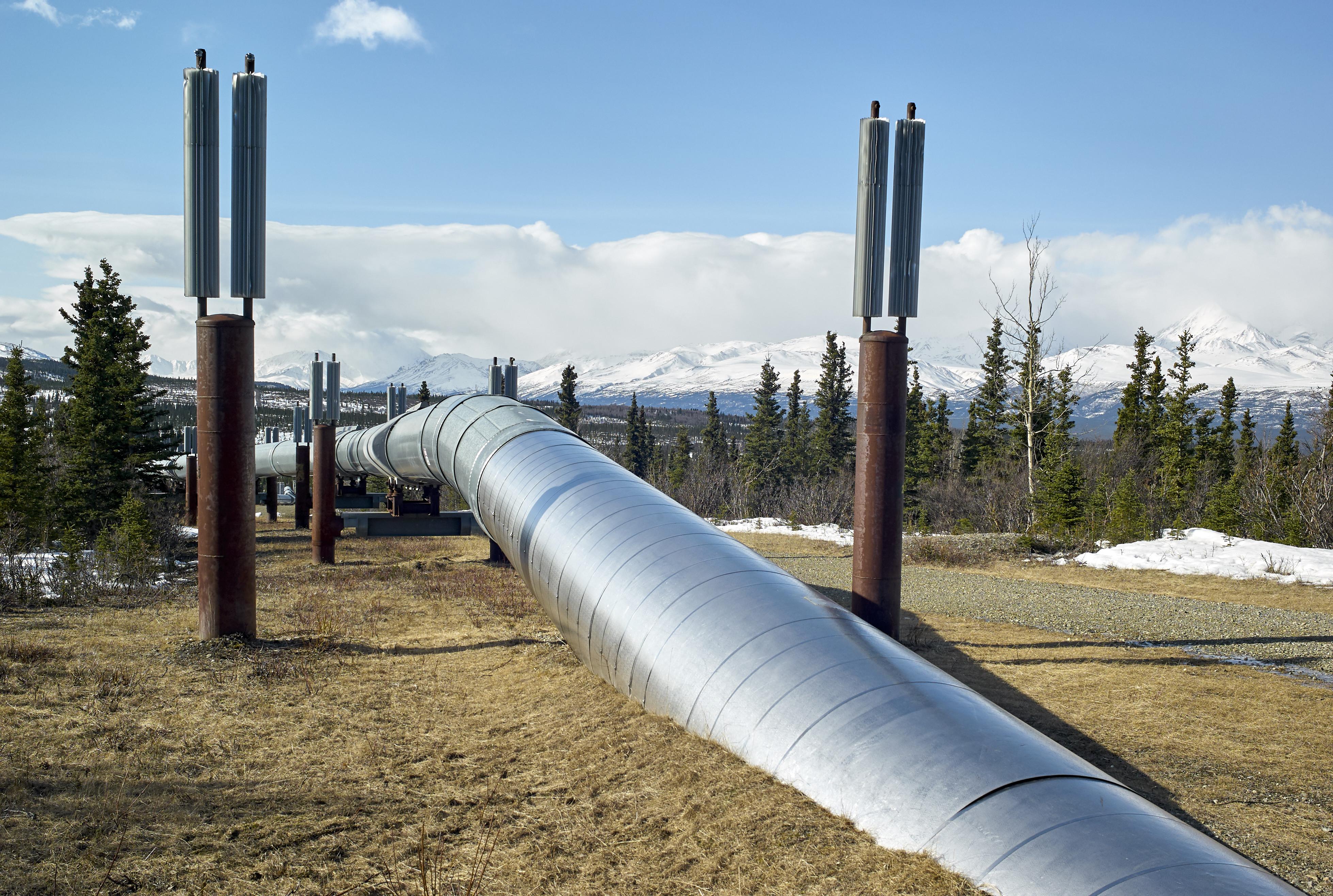 Az utolsó pillanatban Trumpnak sikerült megnyitnia az utolsó alaszkai vadont az olajcégek előtt