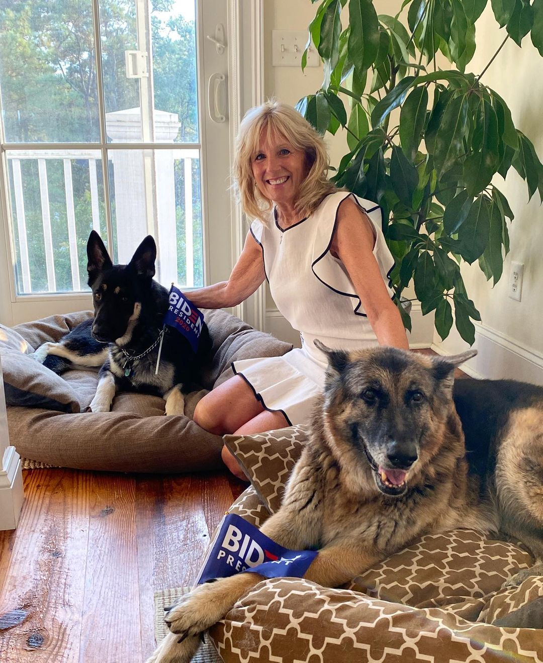 Trumpék helyére beköltözik egy mentett kutya és egy macska is