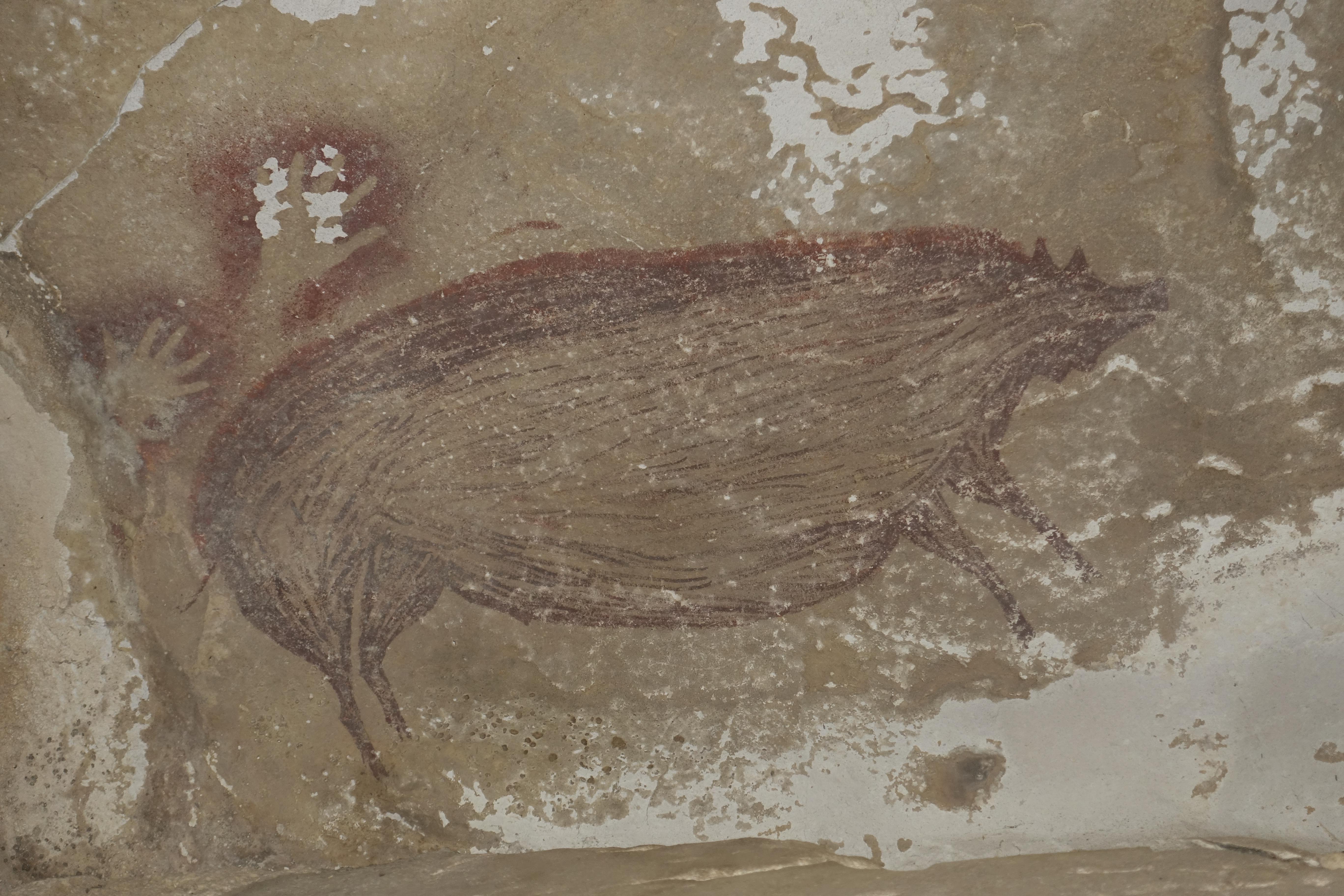 45 ezer éve disznót festettek egy indonéziai barlang falára