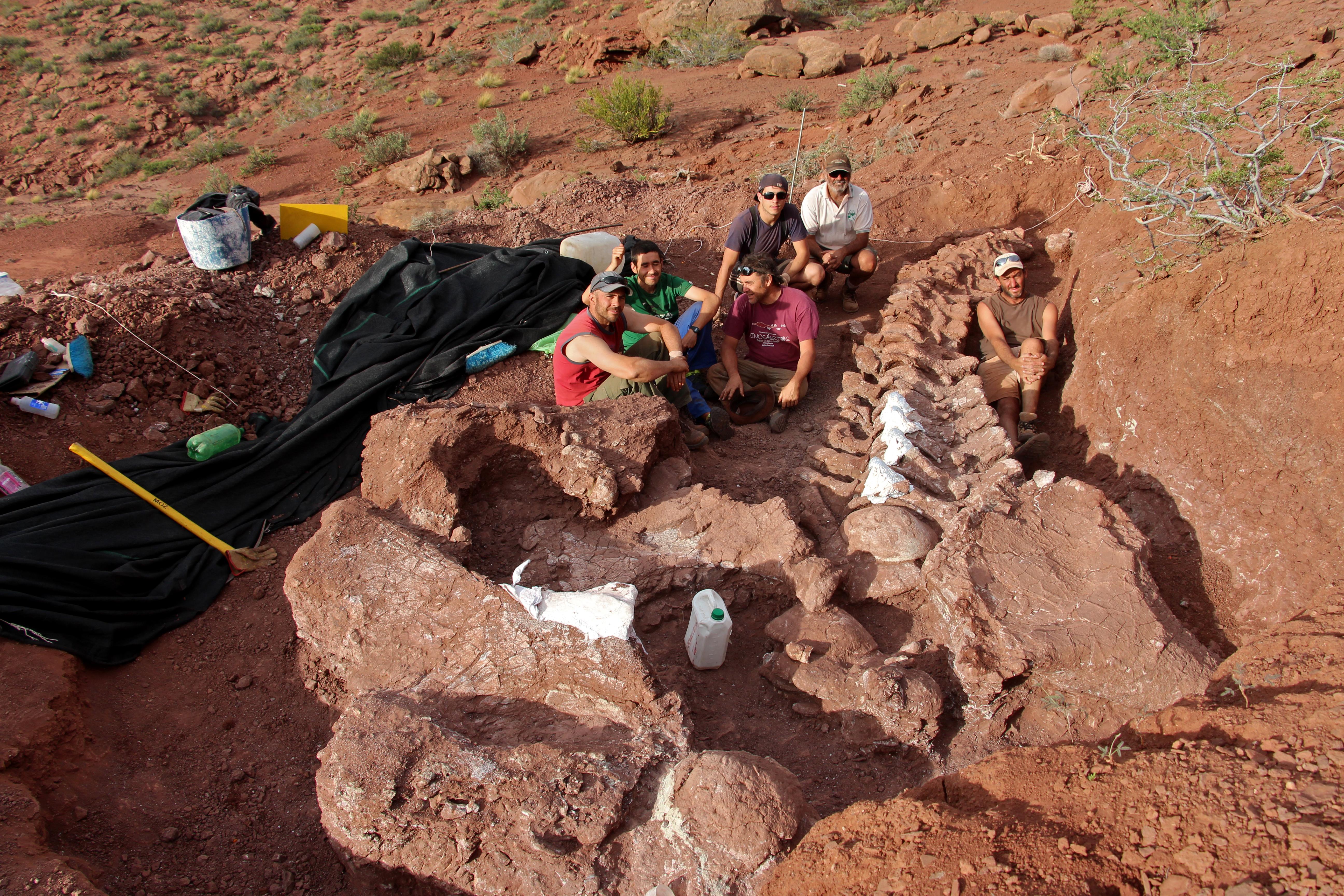 Gigantikus dinoszauruszt találtak Argentínában