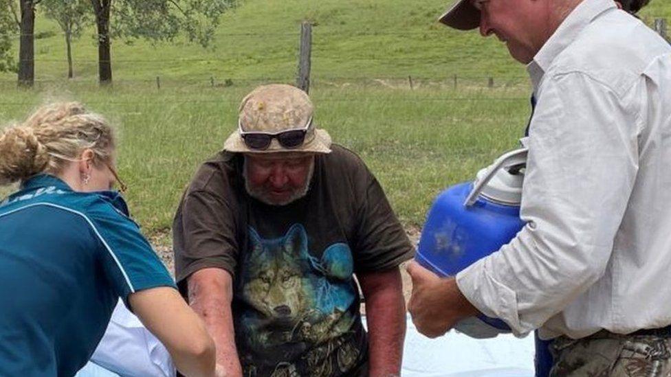 18 napig bolyongott a pusztában egy 58 éves ausztrál férfi