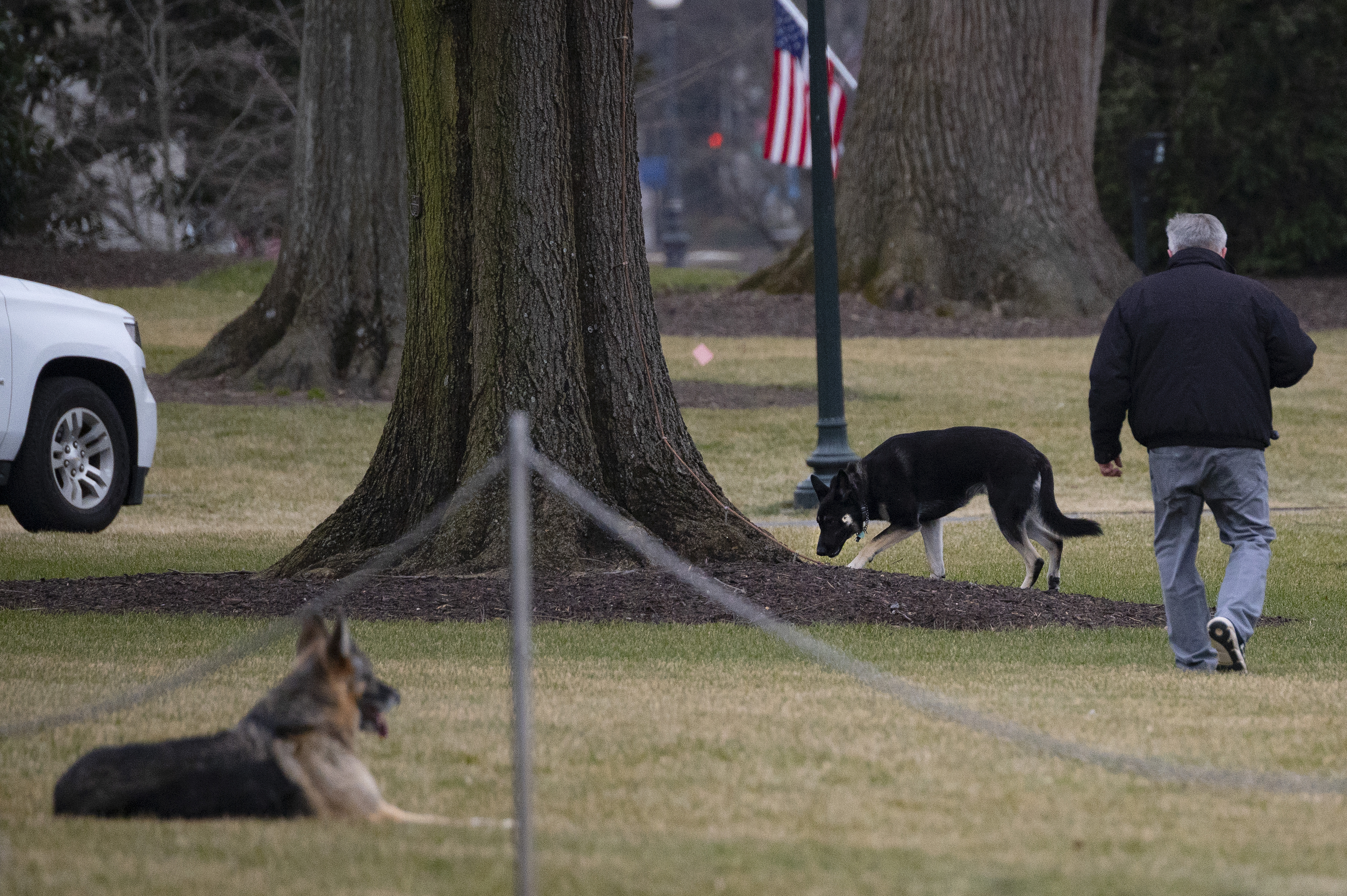 Visszatértek az elnöki háziállatok a Fehér Házba