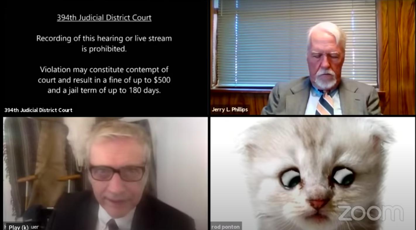 Nem macska vagyok - mondta az ügyvéd a valaha volt legviccesebb bírósági tárgyaláson, pedig tényleg macska volt