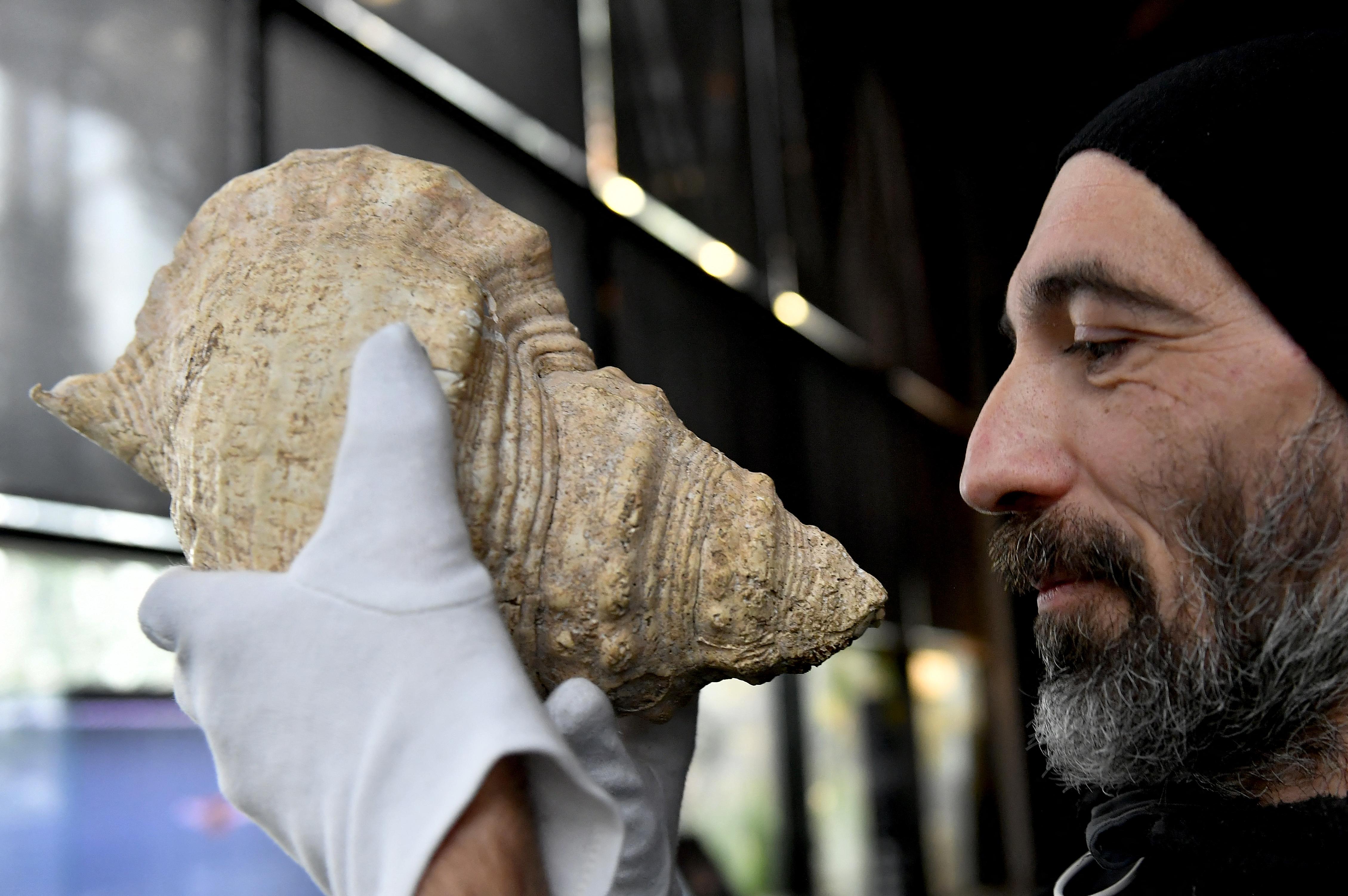 Szinte tökéletes zenei hangokat sikerült kicsalogatni egy 17 000 éves kagylóból