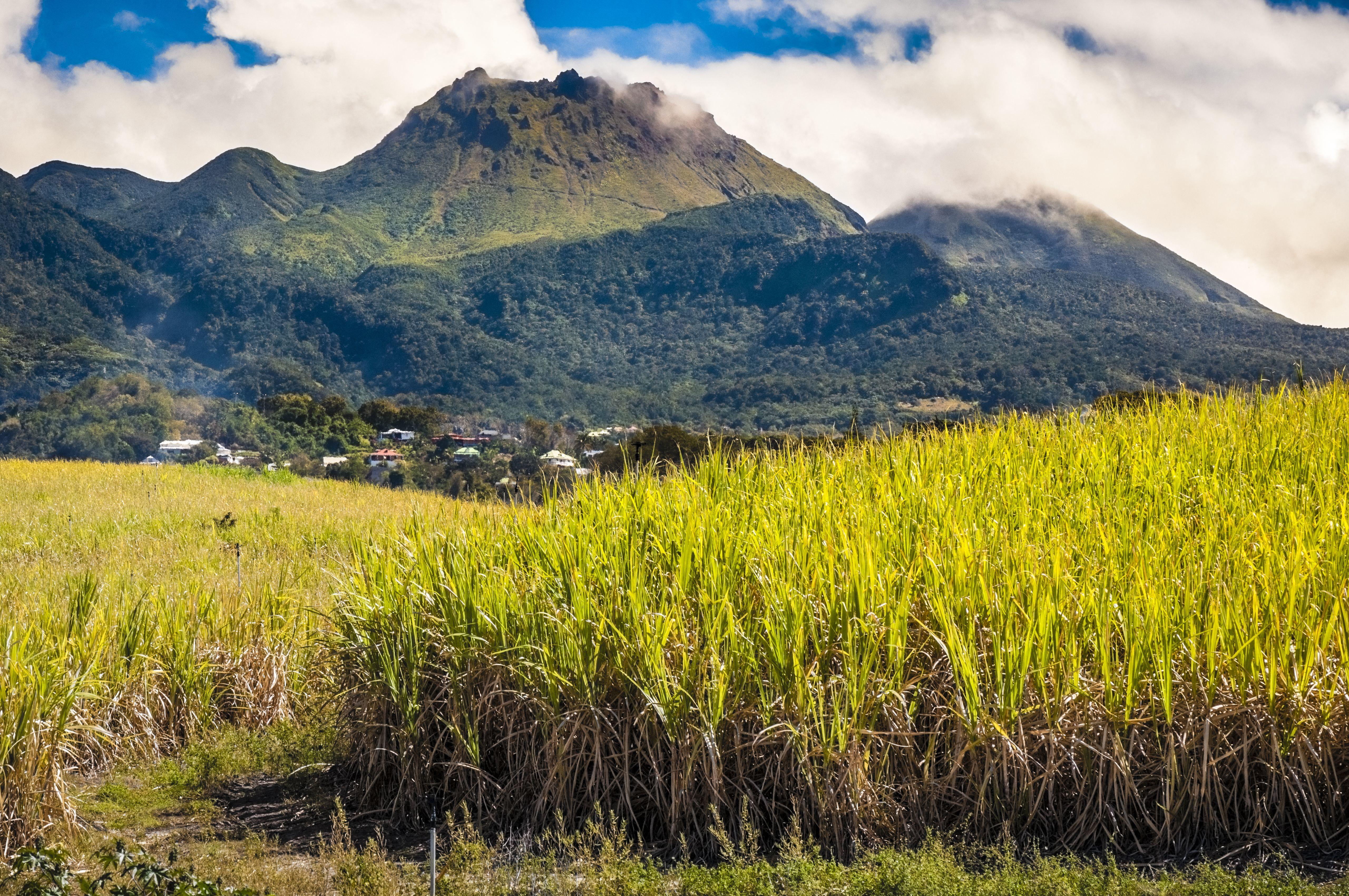 Vulkánkitörés várható Saint Vincent szigetén, evakuálták a lakosságot