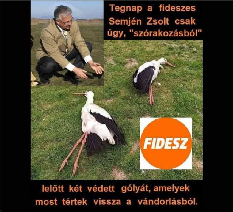 Első látásra is kamuképpel próbálták gólyagyilkosnak beállítani Semjén Zsoltot, mire Bayer Zsolt fizikailag is ráuszította a híveit a képet megosztó nőre