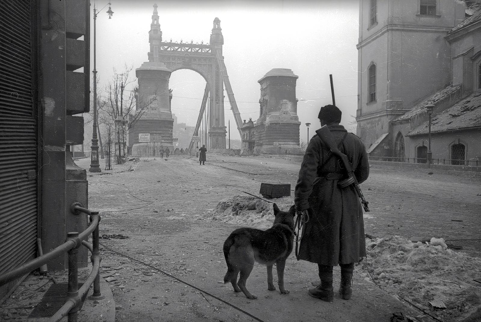 A szovjet katonák nem parancsra, hanem saját szakállukra garázdálkodtak az ostrom alatt álló Budapesten