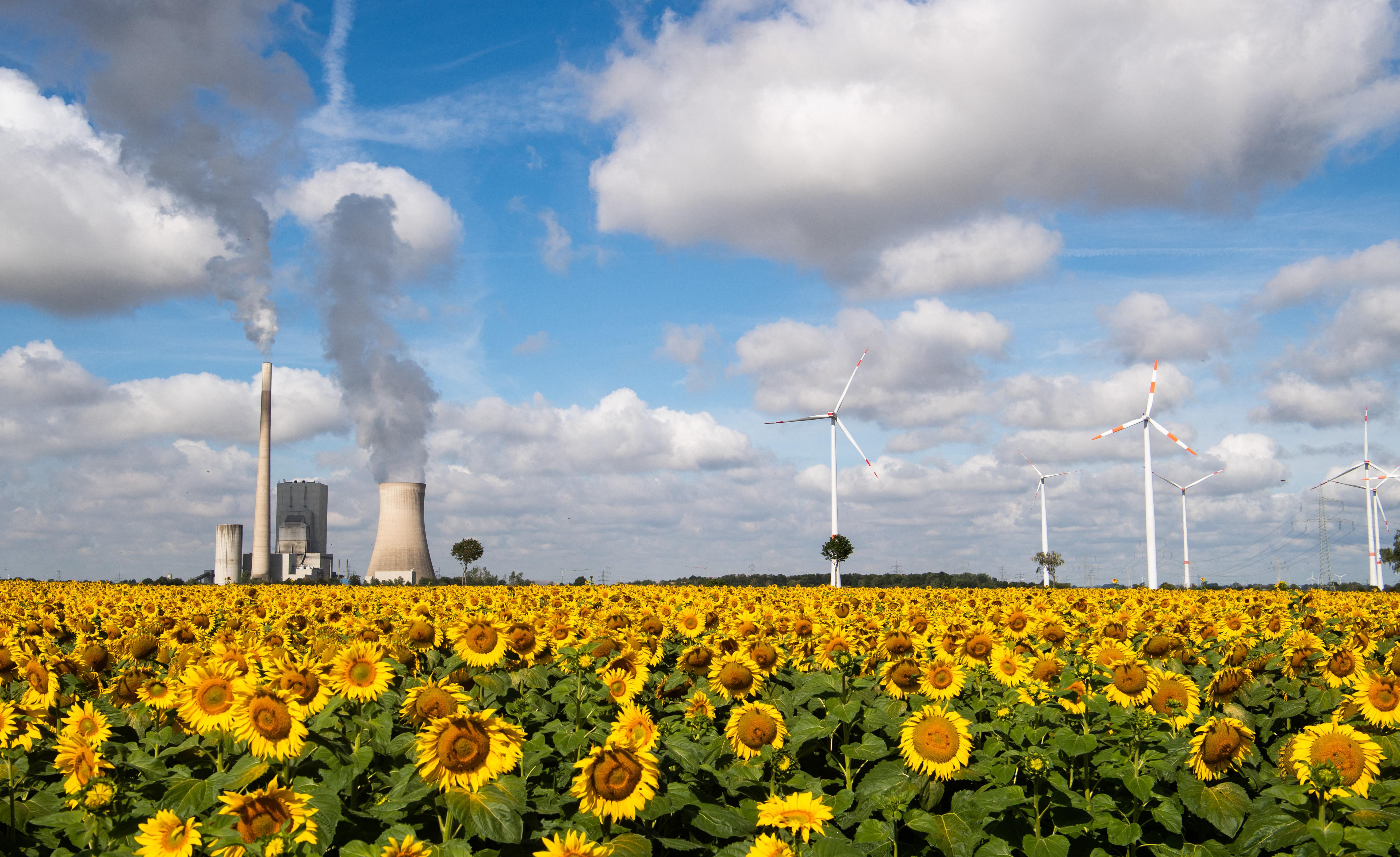 Németország jelentősen megemeli a klímacéljait, 2045-re klímasemlegessé válnának