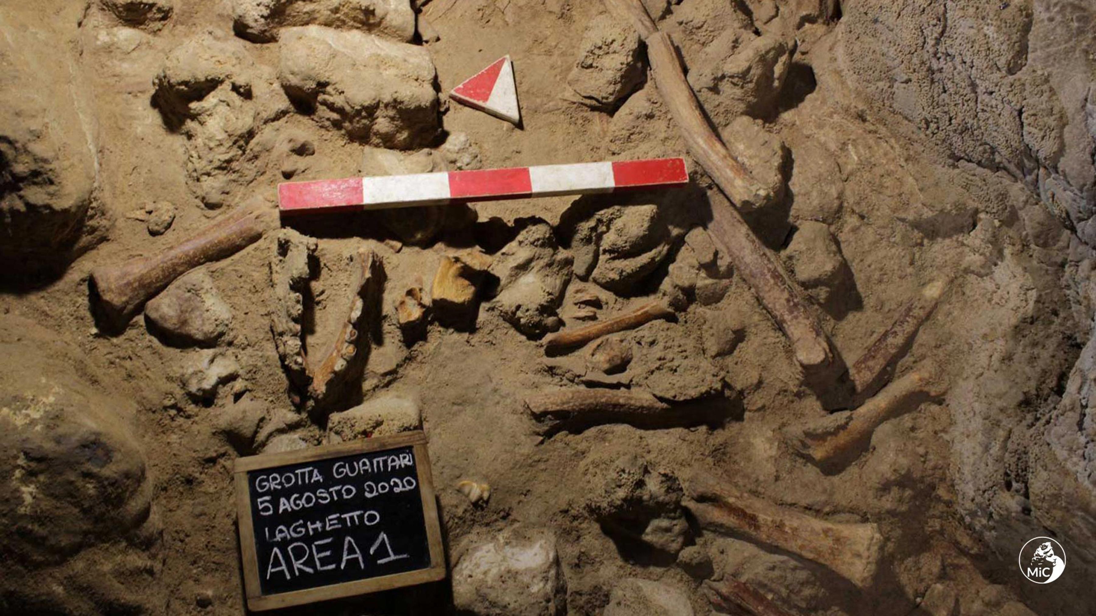 Hiénák ölhettek meg kilenc neandervölgyit Olaszországban