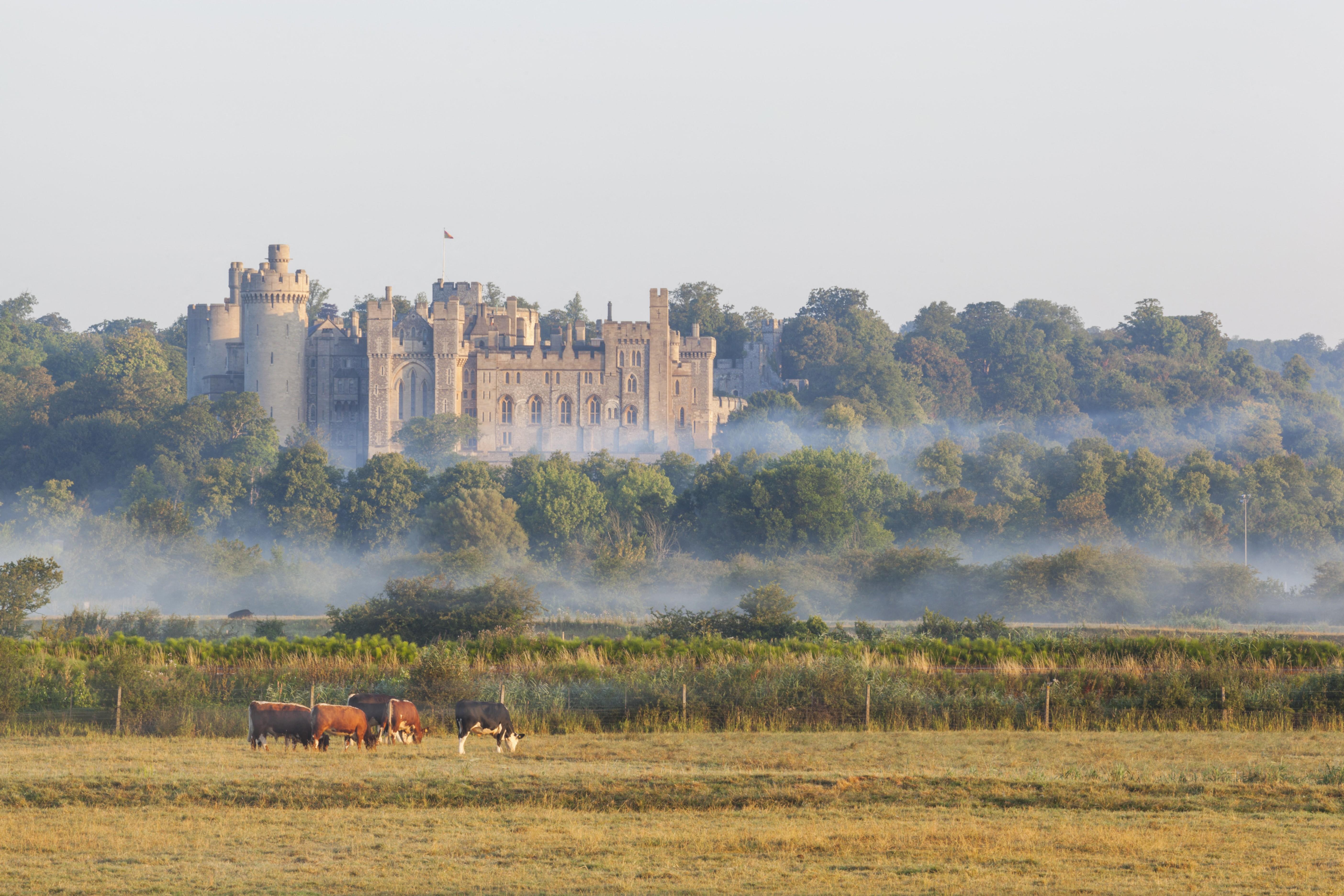 Egymillió font értékben raboltak el kincseket egy brit nemesi várból