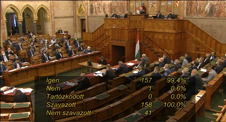A Fidesz és a Jobbik megszavazta a homofób módosítókkal teleírt pedofiltörvényt