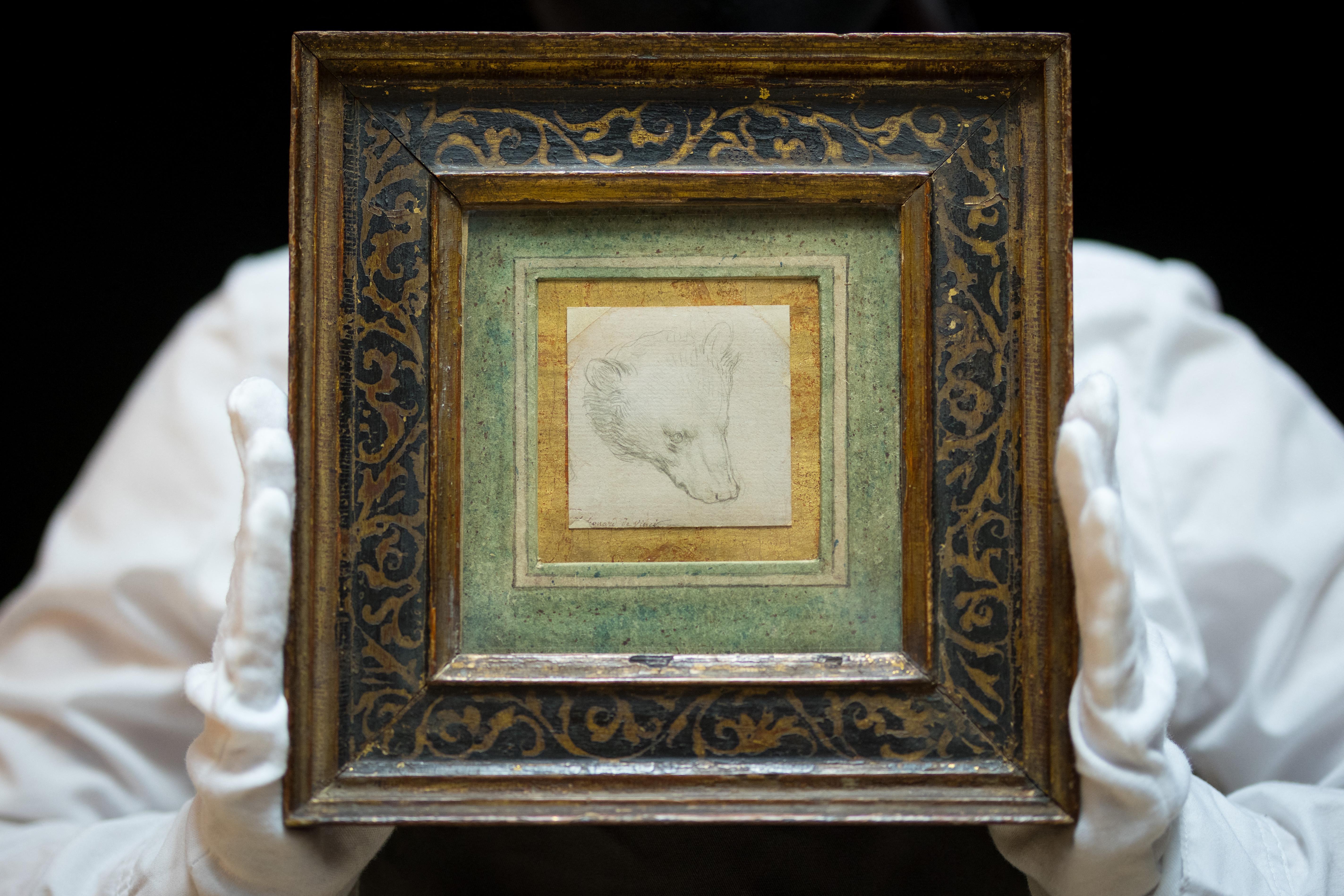 5 milliárd forintnál is drágábban kelhet el da Vinci 500 évesnél is idősebb medverajza