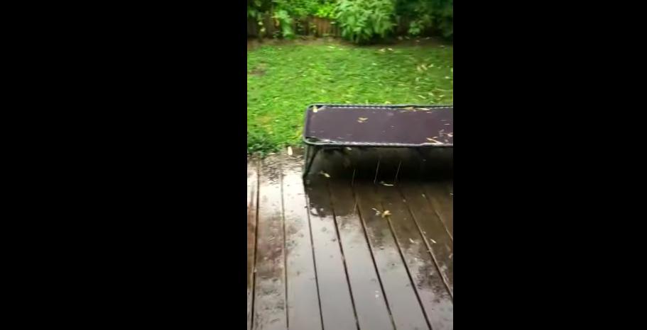 Libabőr! Videón rögzítettük a hét legfontosabb hírét, miszerint eleredt az eső