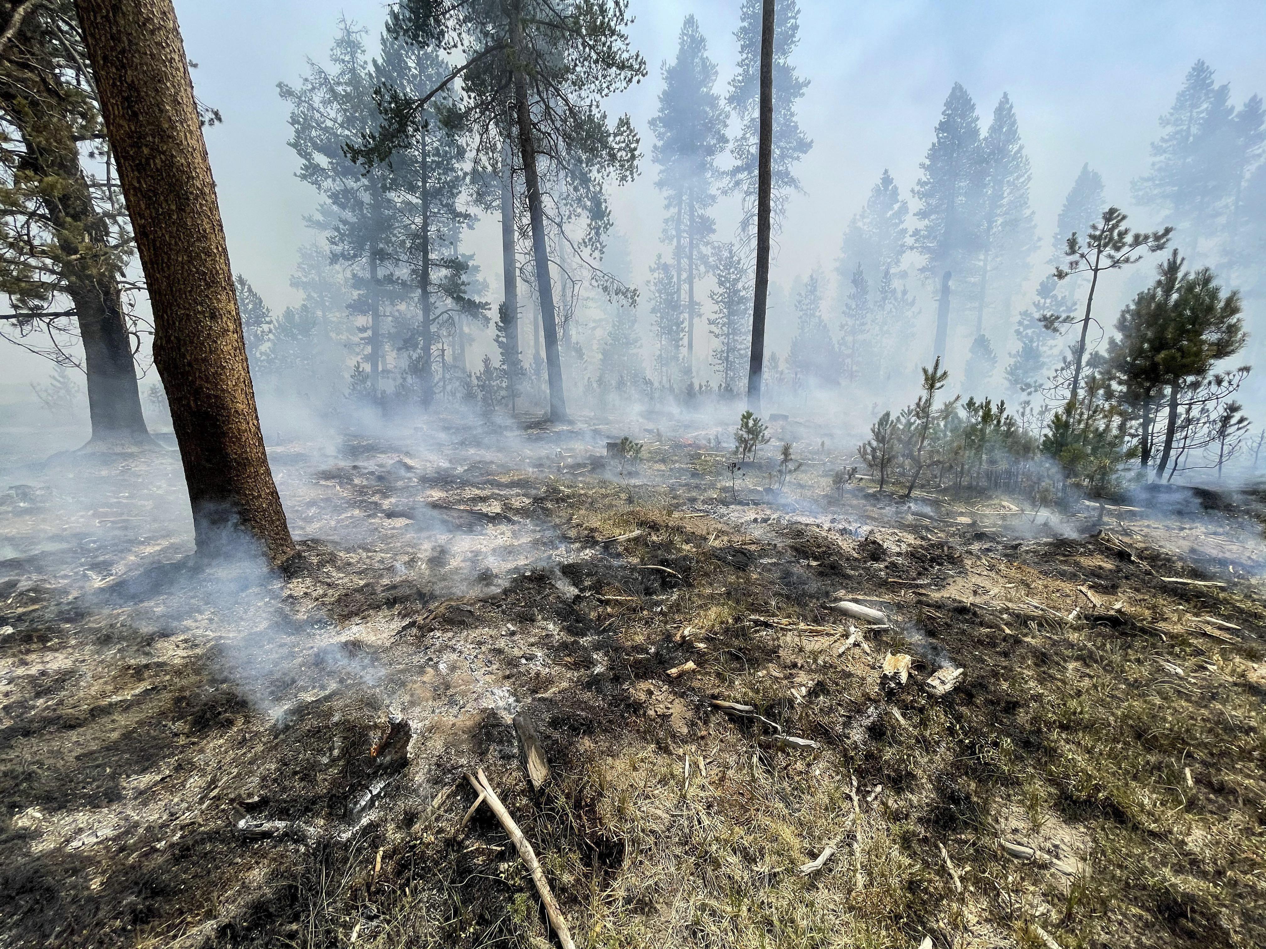 Légszennyezettségi riadót hirdettek az USA keleti partján, mert annyi az erdőtűz a nyugati parton