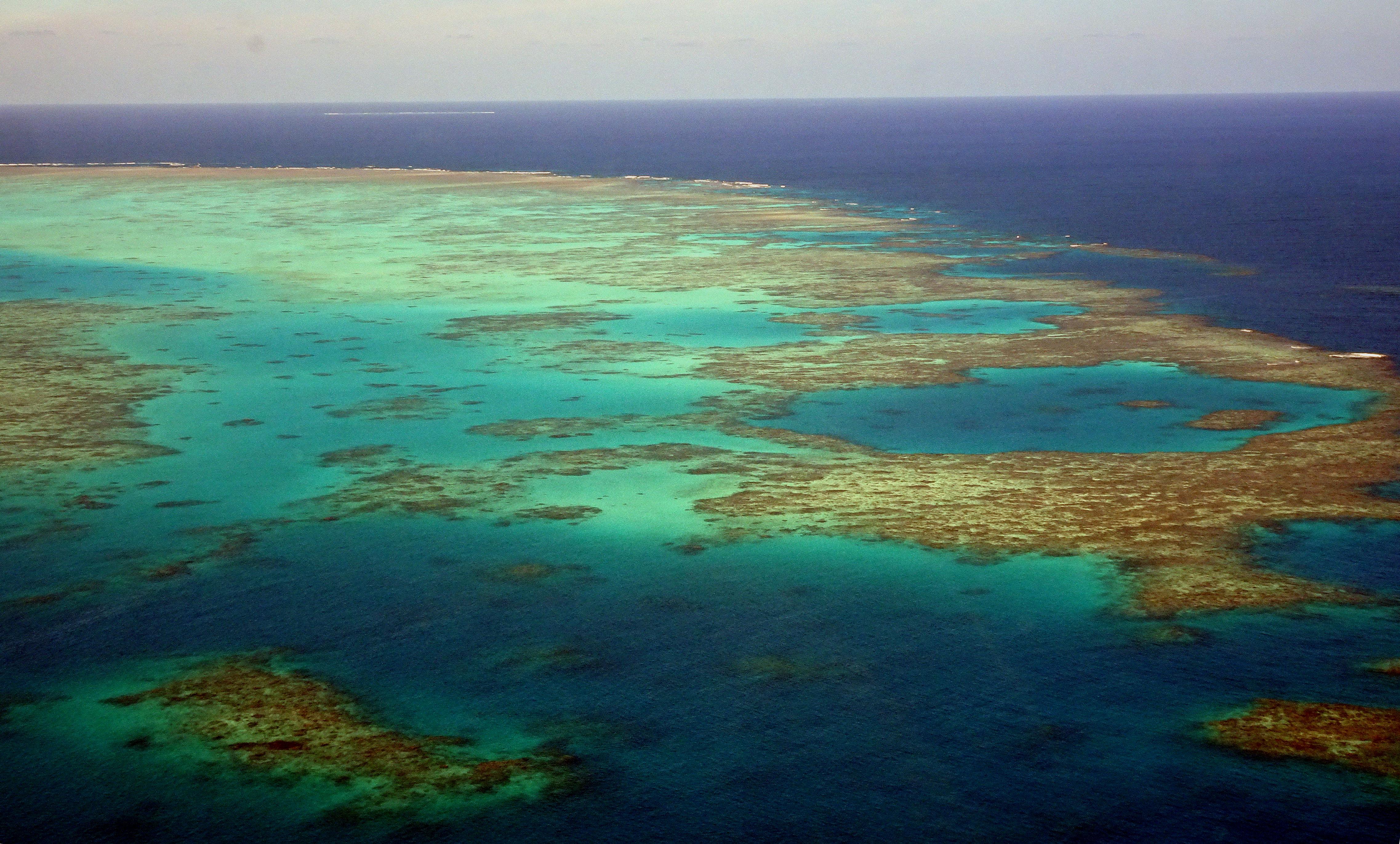 Ausztrália nem akarja, hogy az UNESCO veszélyeztetettnek minősítse a Nagy-korallzátonyt