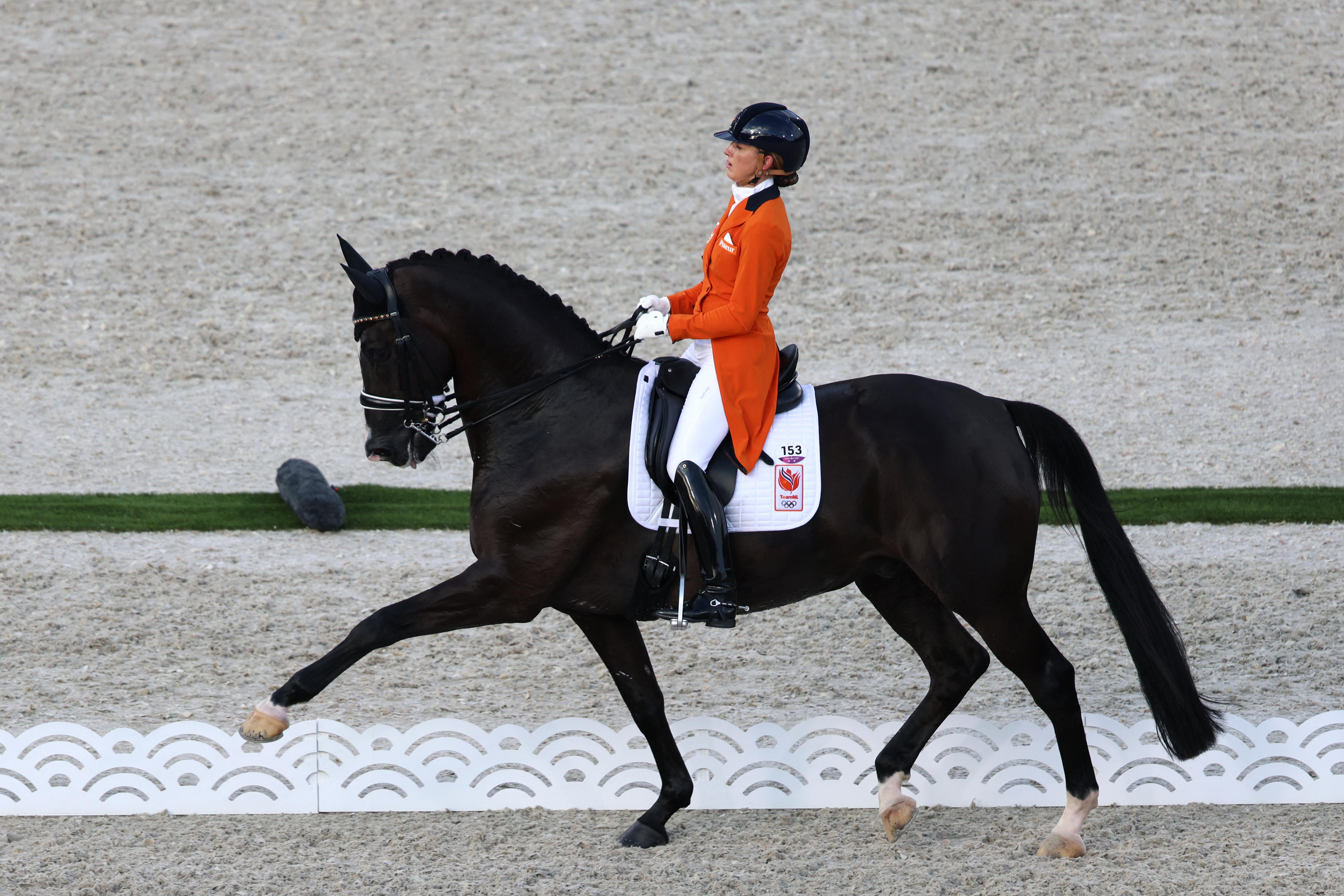 Mindig érdekelte a lovassport az olimpián, de sose tudta, mit kell nézni?
