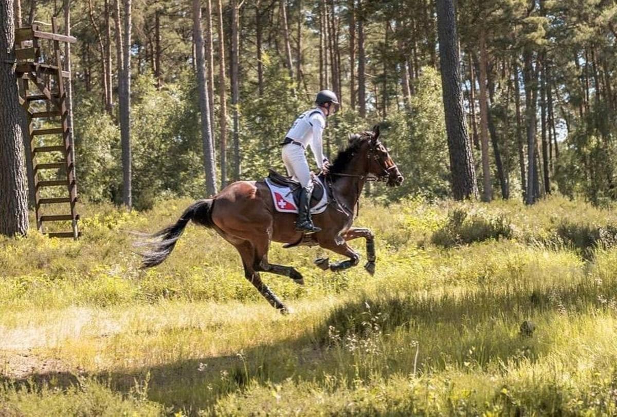 Elaltattak egy svájci lovat az olimpián