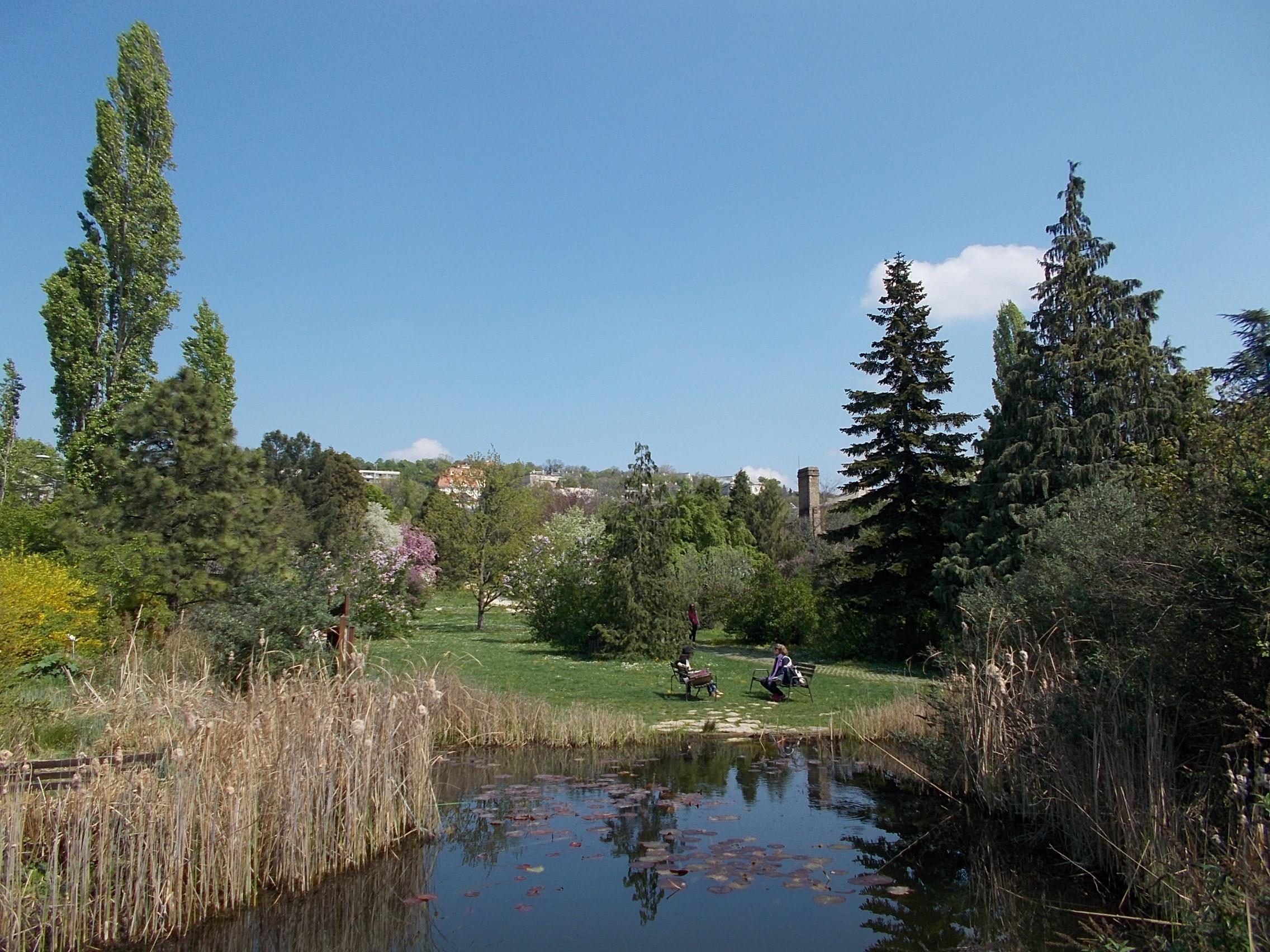 Jelentős oktatási és természeti értékek tűnnének el a volt Kertészeti Egyetem kiebrudalásával