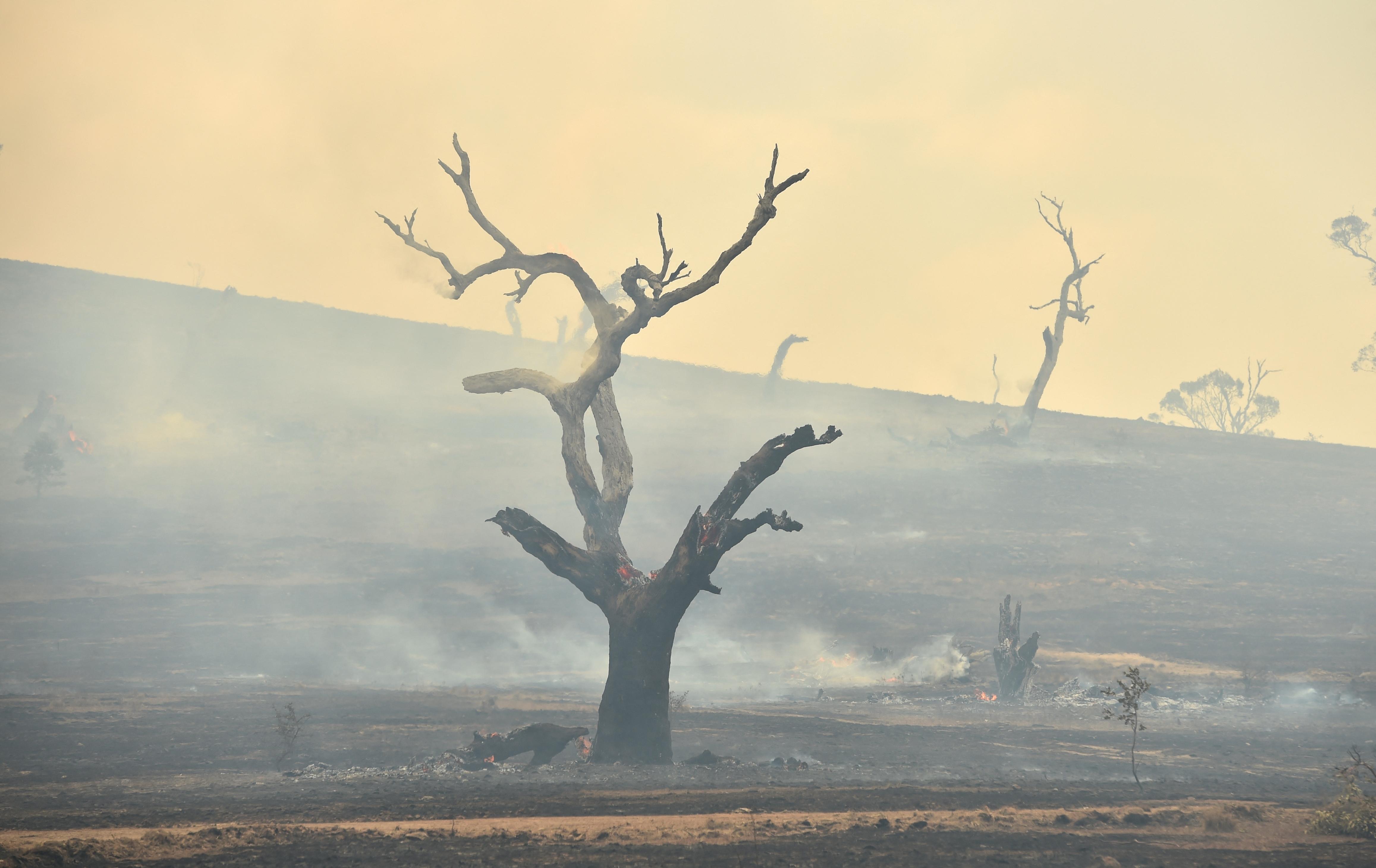 A klímaváltozás miatt hosszabb lehet a bozóttűzszezon Ausztráliában