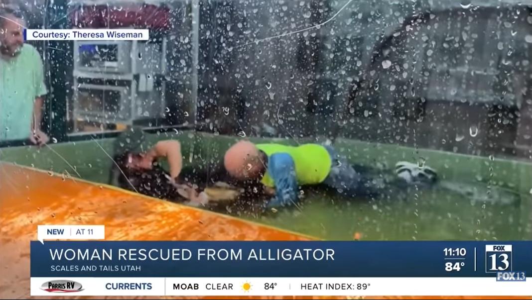 Egy látogató mentette meg a bajba került aligátorgondozót egy utah-i állatkertben