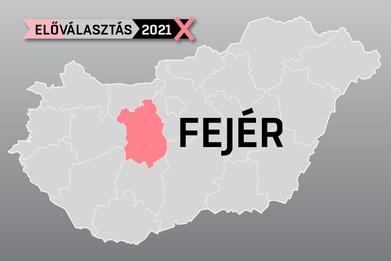 Volt katonák és egy kutyakozmetikus is készül megszorongatni a Fideszt Fejér megyében