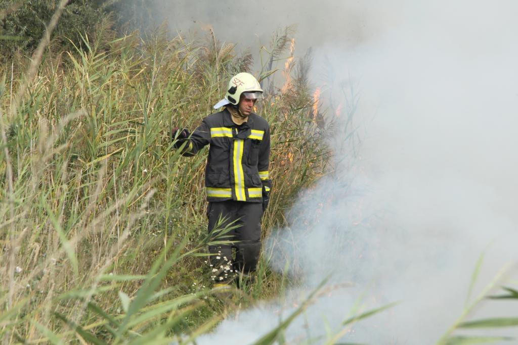 Kigyulladt a nádas a Velencei-tónál, több hektár égett
