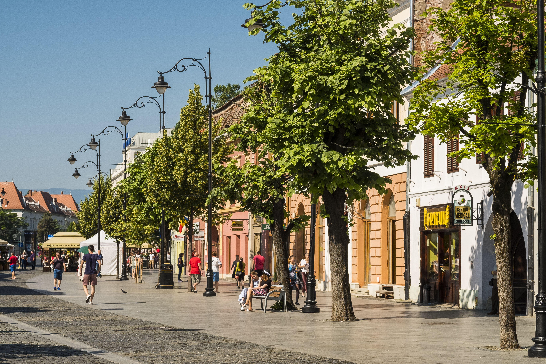 Romániában belföldön is bevezetik az uniós védettségi igazolványt