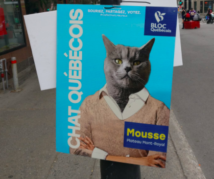 Egy titokzatos plakátrongáló hős teszi klasszá Montréalban a választásokat