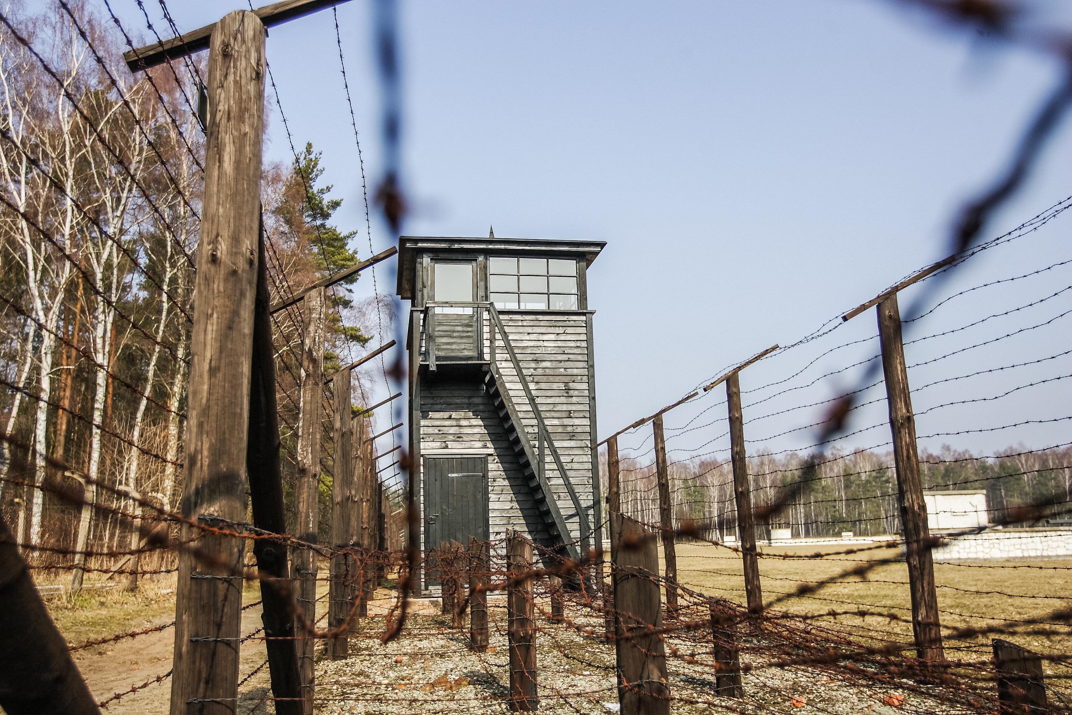 Őrizetbe vették a stutthofi koncentrációs tábor egykori titkárnőjét, aki nem jelent meg a tárgyalásán